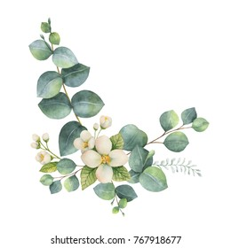 Watercolor hand painted wreath with green eucalyptus leaves and Jasmine . Spring or summer flowers for invitation, wedding or greeting cards.