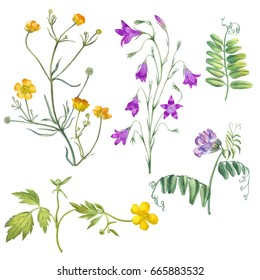 Watercolor hand painter flowers. Can be used as romantic background for web pages,wedding invitations, greeting cards, postcards, textile and package design,patterns,prints, wallpapers and so on.