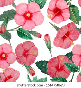 Watercolor hand painting seamless pattern, pink hibiscus flower blossom, green leaves on white background, Natural tropical plant graphic and vibrant repeated print textile, fabric, vintage wallpaper