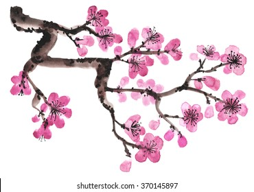 фотообои Watercolor hand-drawn branch of sakura isolated on white