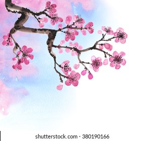 фотообои Watercolor hand-drawn branches of sakura isolated on white