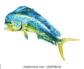 Watercolor hand-drawn mahi-mahi fish illustration - jumping up. Character, logo, children wallpaper, doodle, cartoon. Marine clip art. Ocean, sea inhabitant.