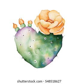 Watercolor handpainted cactus plant isolated on white background.Watercolor clipart,individual flowering cactus.Perfect for your project,cover,wallpaper,pattern,gift paper,wedding,invitation,bouquets