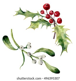 Watercolor holly and mistletoe set. Hand painted christmas floral element isolated on white background. Botanical illustration for design