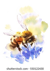 Watercolor Honey Bee on Blue Flower Hand Painted Summer Illustration