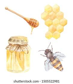 Watercolor honey set isolated on white background