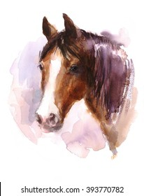 Watercolor Horse Farm Animal Portrait Hand Painted Illustration