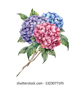Watercolor hydrangea bouquet. Hand painted pink and violet flowers with leaves isolated on white background for design, print