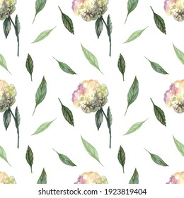 Watercolor hydrangea on a white background. Handmade flowers.  Flowers and leaves isolated. Seamless pattern with flowers.