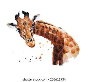 watercolor illustration about giraffe