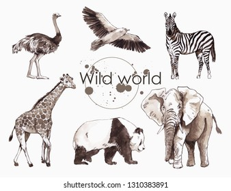 watercolor illustration of African animals: zebra, ostrich, elephant, giraffe, vulture, a set of drawings from the hands of animals in the zoo, isolated on white background