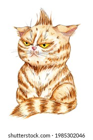 Watercolor illustration of an angry ginger cat. A kitten with displeased big yellow eyes. Cartoon funny kitty drawing for prints. Isolated on white background. Drawn by hand.