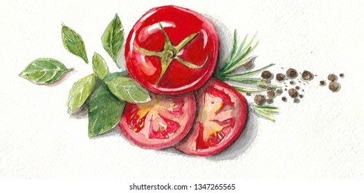 watercolor illustration of basil leaves tomato and black pepper peas