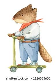 fun beaver images  stock photos  u0026 vectors