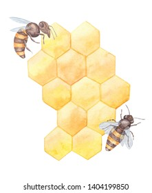 Watercolor illustration with bees & combs