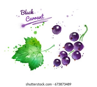 Watercolor illustration of black currant and leaf with paint smudges and splashes.