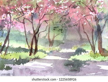 Watercolor illustration of blooming trees in park. Cercis, Judas-tree. Spring, pink blossom, green grass. Beautiful landscape for postcards. Traditional painting.