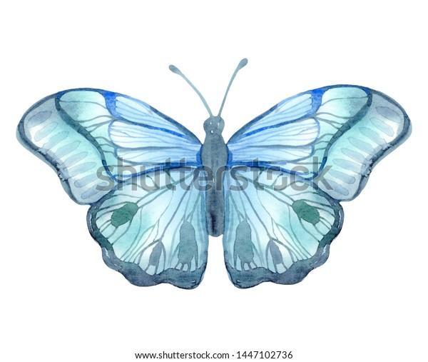 Ilustración De Stock Sobre Watercolor Illustration Blue