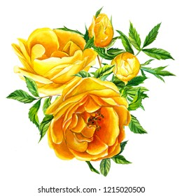 Watercolor illustration, bouquet of flowers, yellow roses, on an isolated white background. Botanical painting, hand drawing. Wedding heart of flowers
