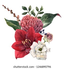 Watercolor illustration, a bouquet of red flower amaryllis, chrysanthemum and leaves,