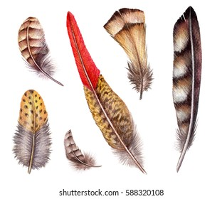 watercolor illustration, brown red boho feather set, easter clip art, tribal accessories, design elements, isolated on white background
