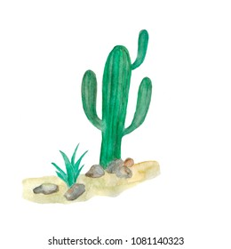 watercolor illustration of cacti in the desert