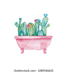 Watercolor illustration. Illustration of Cactuses in a pink bath.Nice illustration for book, stickers, logo, business card, postcard, birthday or any other card design.