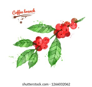 Watercolor illustration of coffee branch with leaves and berries with paint smudges and splashes on white background.