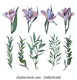 Watercolor illustration - collection of alstroemeria flowers. Beautiful alstroemeria set. Floral design elements. Perfect for Wedding invitation, greeting card, postcard, poster, textile, print etc.