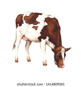 Watercolor illustration of a cow. Watercolor farm animals