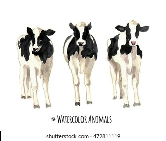 Watercolor illustration of a cows sketch.Watercolor farm animals.Tee shirt graphic. Animal silhouette. Wildlife art illustration.Vintage graphic for fabric,postcard,greeting card,book