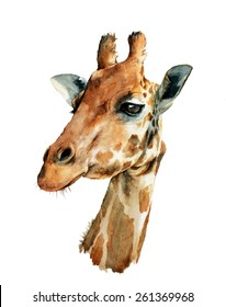 watercolor illustration with cute giraffe