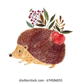 Watercolor illustration with cute hedgehog