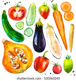 Watercolor illustration with farm grown products. Vegetables set: tomato, eggplant, carrots, pumpkin, cucumber, zucchini, peppers,. Fresh organic food.