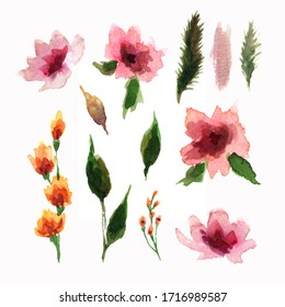 watercolor illustration of flowers on a white background. individual objects in the form of delicate pink spots