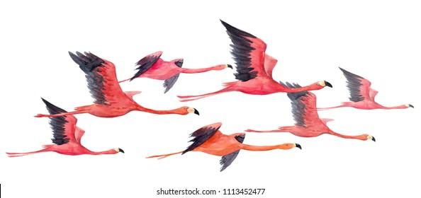 Watercolor illustration of flying pink flamingos, horizontal banner