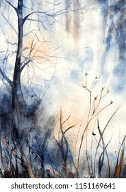 Watercolor illustration of foggy forest for your project