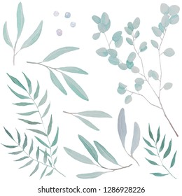 Watercolor illustration of forest leaves of fern, willow, osier, sallow.