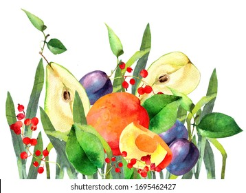 Watercolor illustration with fruits. Pear, peach, plum and berries. Raster illustration.