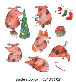 Watercolor illustration for greeting cards and new year greetings. Funny pigs celebrate the new year