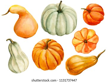 watercolor illustration, hand drawing, autumn set of elements on isolated white background, colored pumpkins