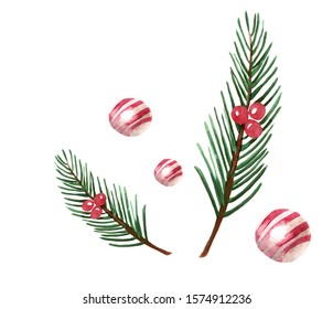 Watercolor illustration with hand drawn christas tree branches and pink candies isolated on white background. Elements for chrismtas and new year packaging and decoration