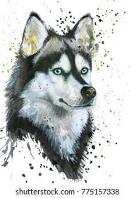 Watercolor illustration of husky dog. Hand drawn