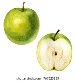 Watercolor illustration. An image of an apple and a half of an apple