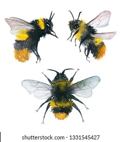 Watercolor illustration of an isolated flying bumblebee on a white background. Drawing of a bumblebee on a white background.