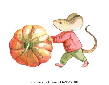 Watercolor illustration is isolated on white background. A Little gray mouse in red jacket and green pants bowls the red pumpkin