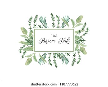 Watercolor illustration. Label with fresh culinary and medicinal herbs and branches. Floral design elements perfect for wedding invitations, greeting cards, blogs, prints, postcards, social media
