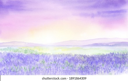 Watercolor illustration of lavender fields.
