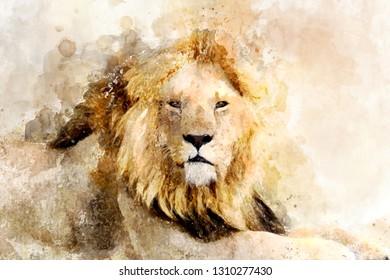 Watercolor illustration lion portrait. Beautiful wildlife world