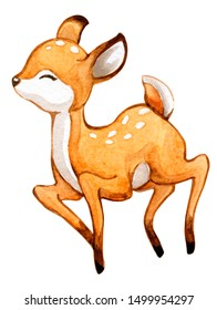 Watercolor illustration of Little Deer. Cartoon style, isolated on white. Perfect graphic for any projects baby showers, invitations, greeting cards, nursery prints , posters and more.